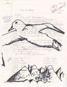 same image as from above, but with black sharpie albatross drawn over
